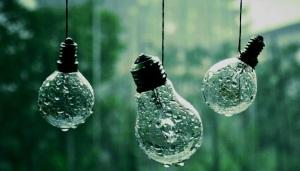 Cultivando ideias